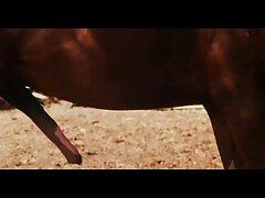 عشاء كورتني عراقي فيلم سكس عراقي كارتر مثير